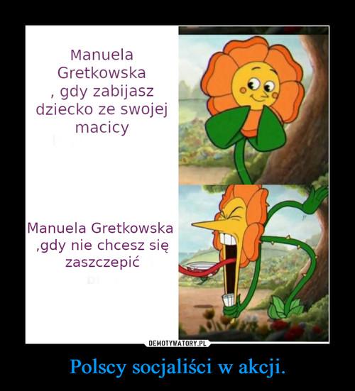 Polscy socjaliści w akcji.