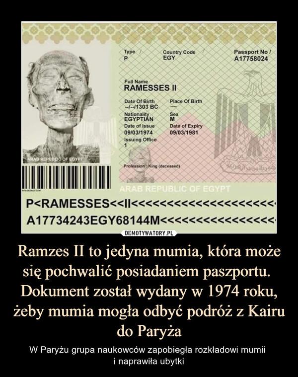 Ramzes II to jedyna mumia, która może się pochwalić posiadaniem paszportu. Dokument został wydany w 1974 roku, żeby mumia mogła odbyć podróż z Kairu do Paryża – W Paryżu grupa naukowców zapobiegła rozkładowi mumii i naprawiła ubytki